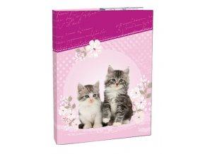 Box na sešity A4 Kitten STIL