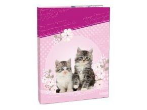 Box na sešity A5 Kitten STIL
