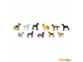 Safari Ltd - Tuba - Psi