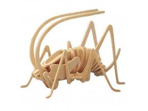 Woodcraft Dřevěné 3D puzzle cvrček