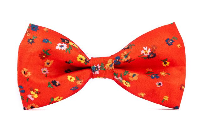 0007_cerveny-motyle-s-kvety-ferdinand-min