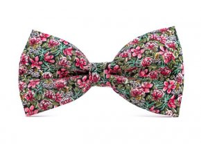 0002 zeleny motylek s ruzovymi kvety gustav min