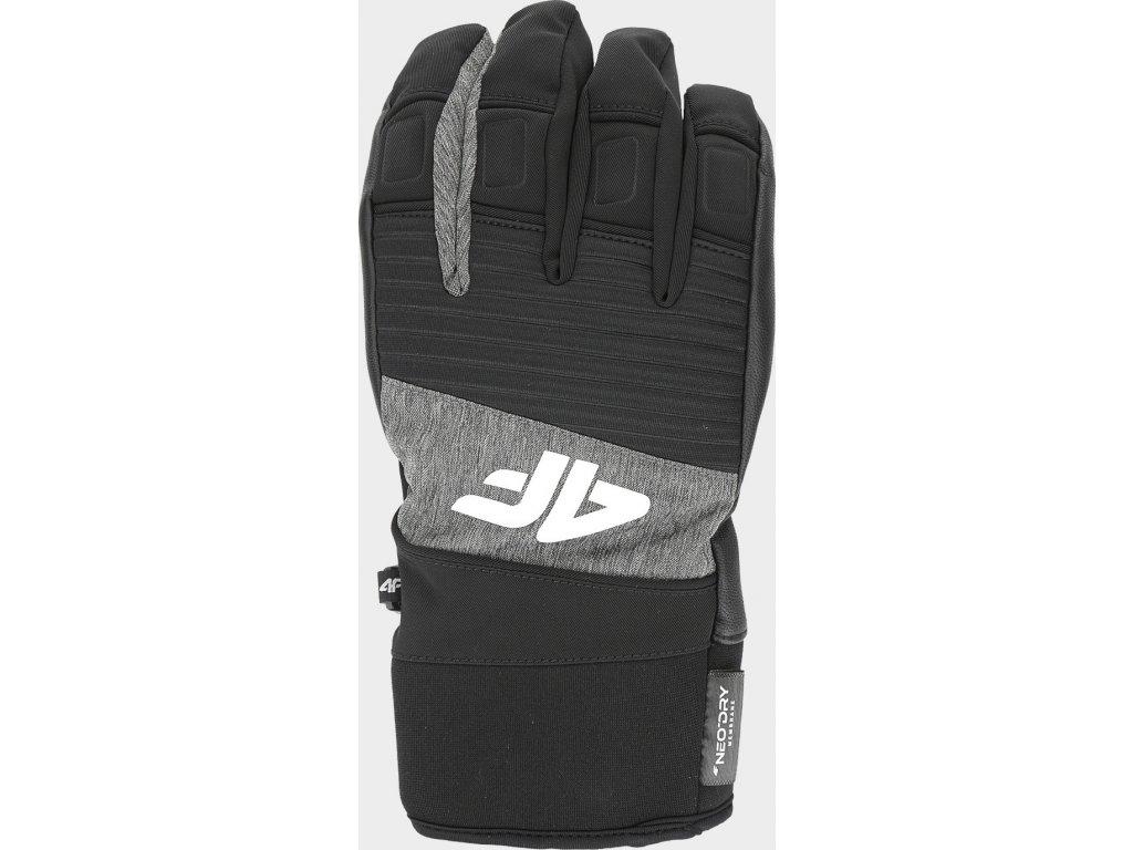 Rękawice narciarskie męskie 4F REM250 Szary