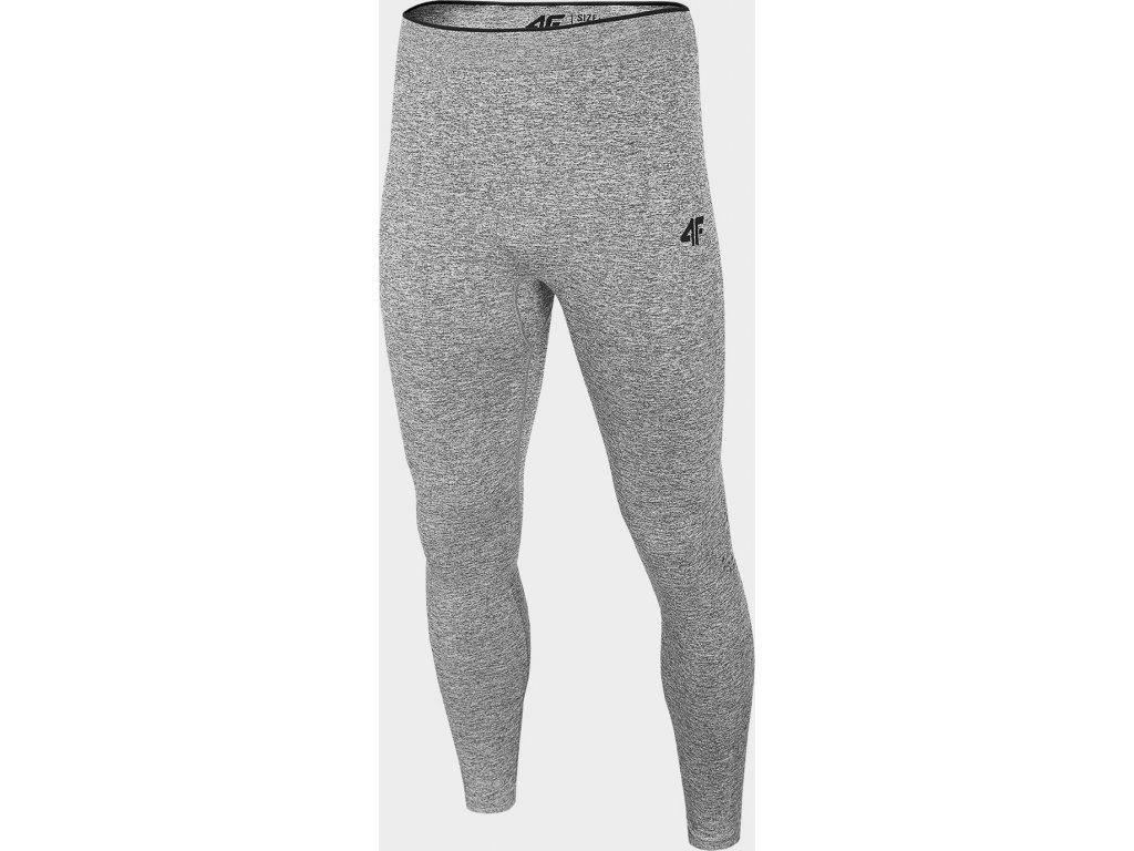Męskie spodnie termiczne 4F BIMB301D Szary
