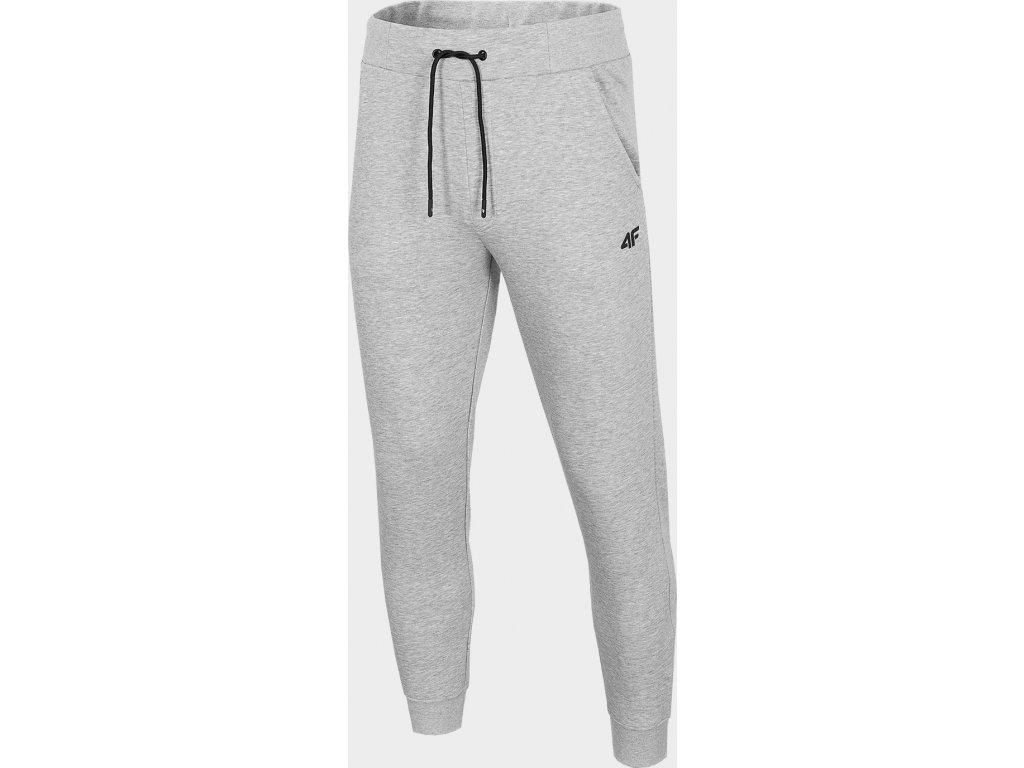 Męskie spodnie dresowe 4F SPMD301 Jasnoszary