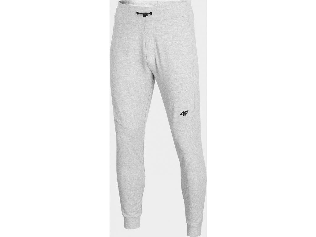 Męskie spodnie dresowe 4F SPMD011 szare