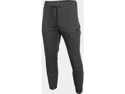 Męskie spodnie miejskie 4F SPMC301 Szare