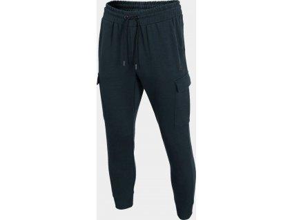 Męskie spodnie dresowe 4F SPMD303 Granatowe