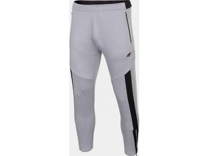 Męskie funkcjonalne spodnie dresowe 4F SPMTR012 szare