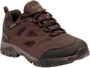 Damskie buty trekkingowe REGATTA RWF572 Holcombe IEP Low Brązowy