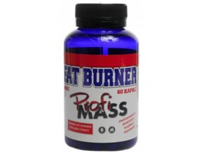 profimass fat burner