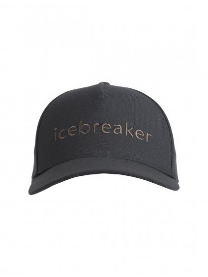 ICEBREAKER Adult Icebreaker Logo Hat, Monsoon