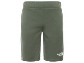 THE NORTH FACE B Surgent Short, Thyme