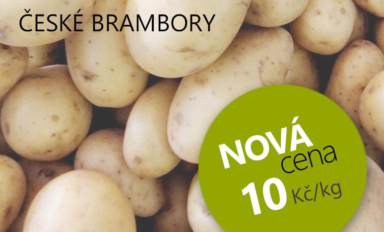 České brambory