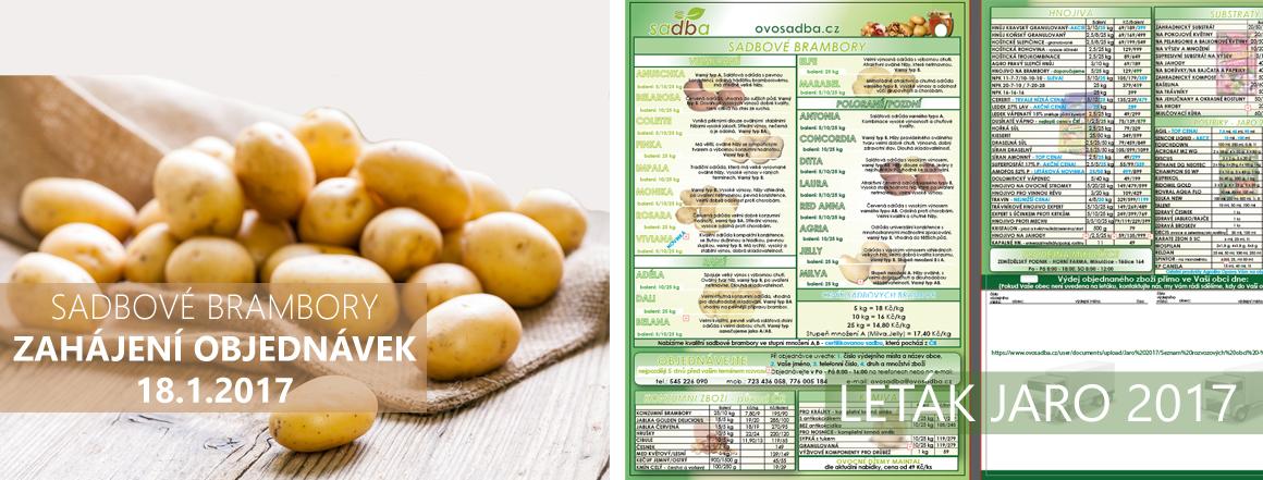 Sadbové brambory jaro 2017