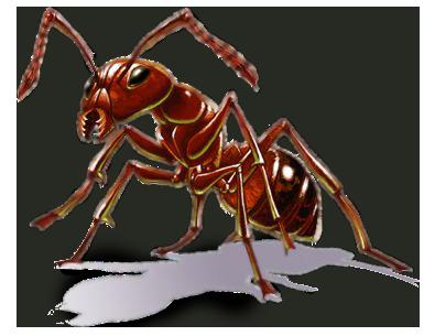 Proti hmyzu