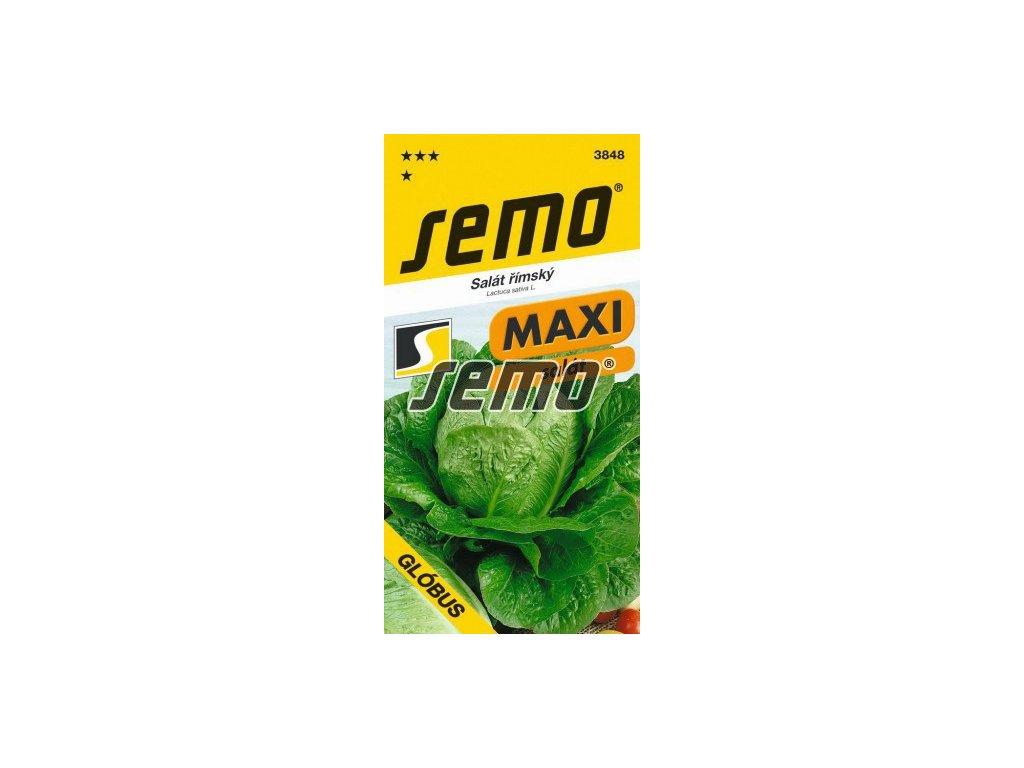 3848 semo zelenina salat rimsky globus 256x500