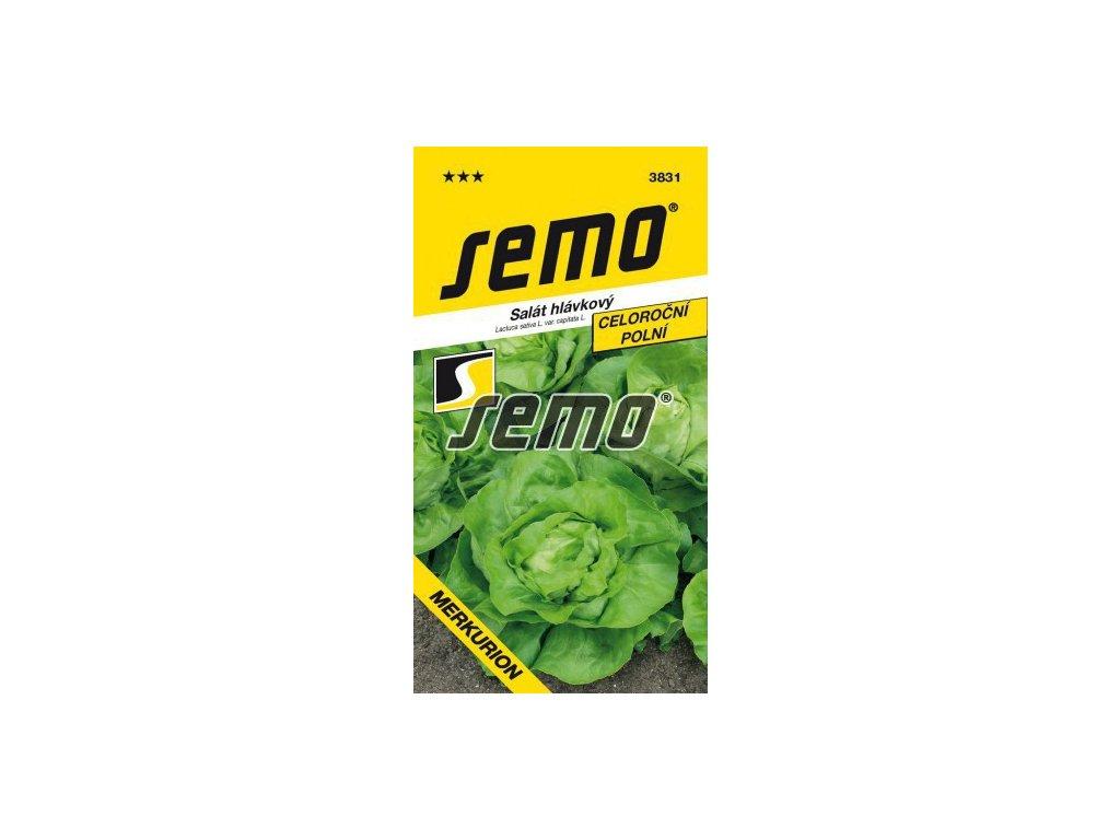 3831 semo zelenina salat hlavkovy merkurion 269x500