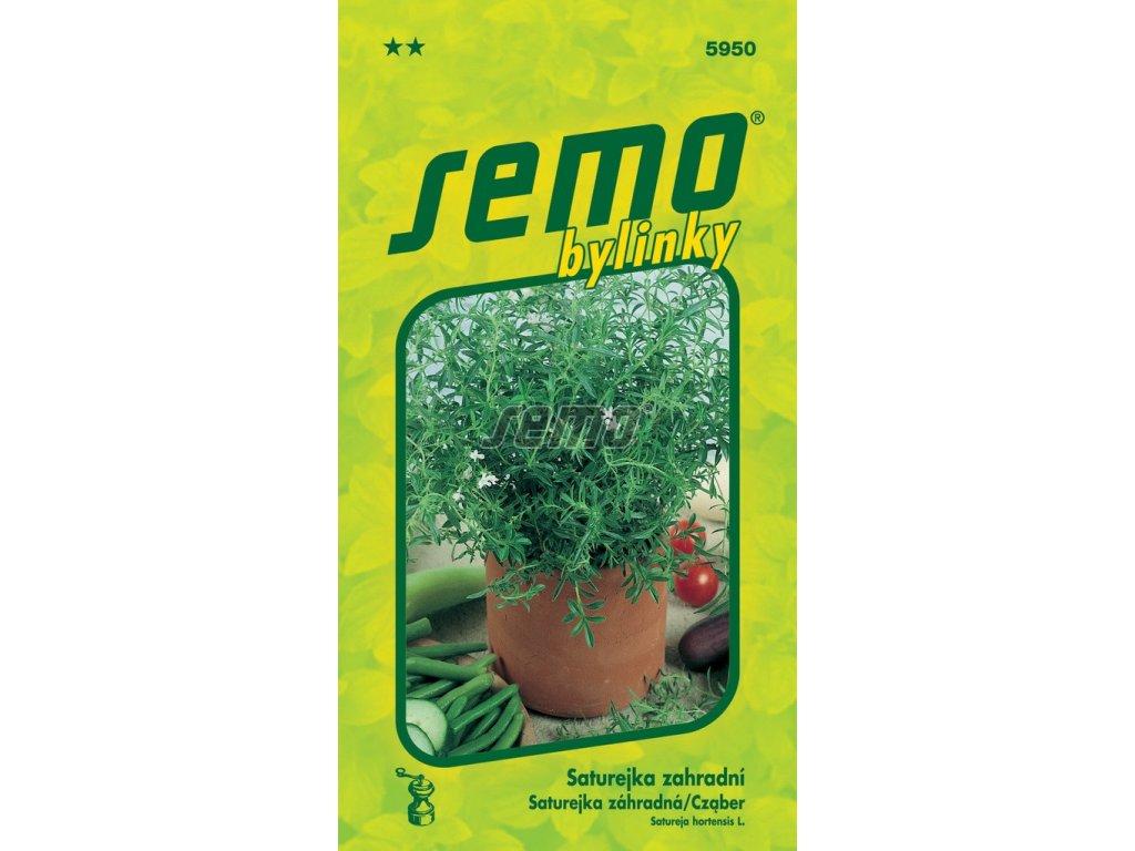 5950 semo bylinky saturejka zahradni