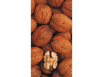 Seifersdorfský ořech (Jupiter)
