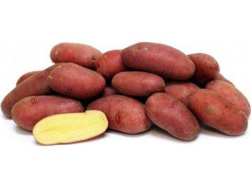 Esmee sadbové brambory