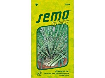 5969 semo bylinky citronova trava
