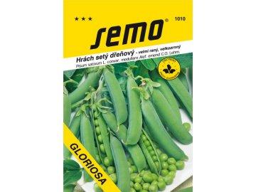 1010 semo zelenina hrach sety drenovy gloriosa 600x892