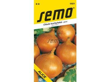 0521 semo zelenina cibule kuchynska alice