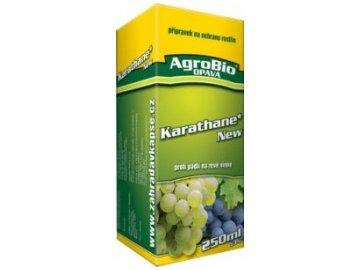 KARATHANE NEW 250 ml