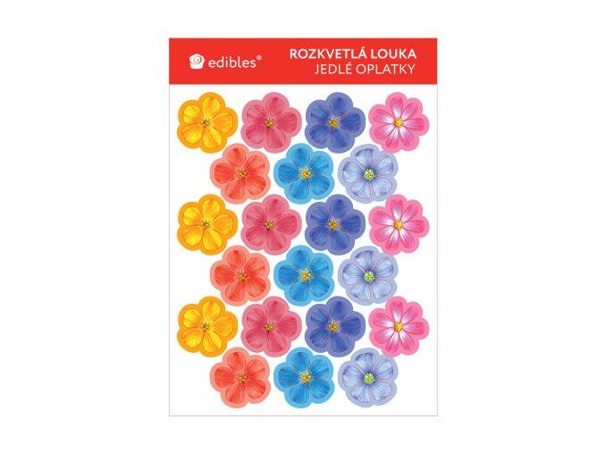 rozkvetla louka 470x470