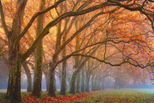 Vitej_podzime