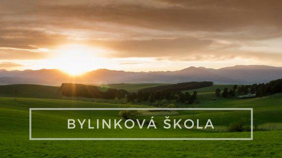 Bylinkova_skola