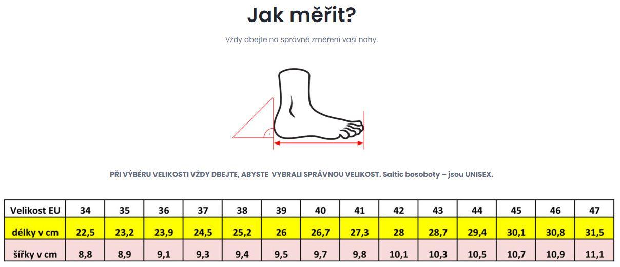 Jak_merit_Saltic