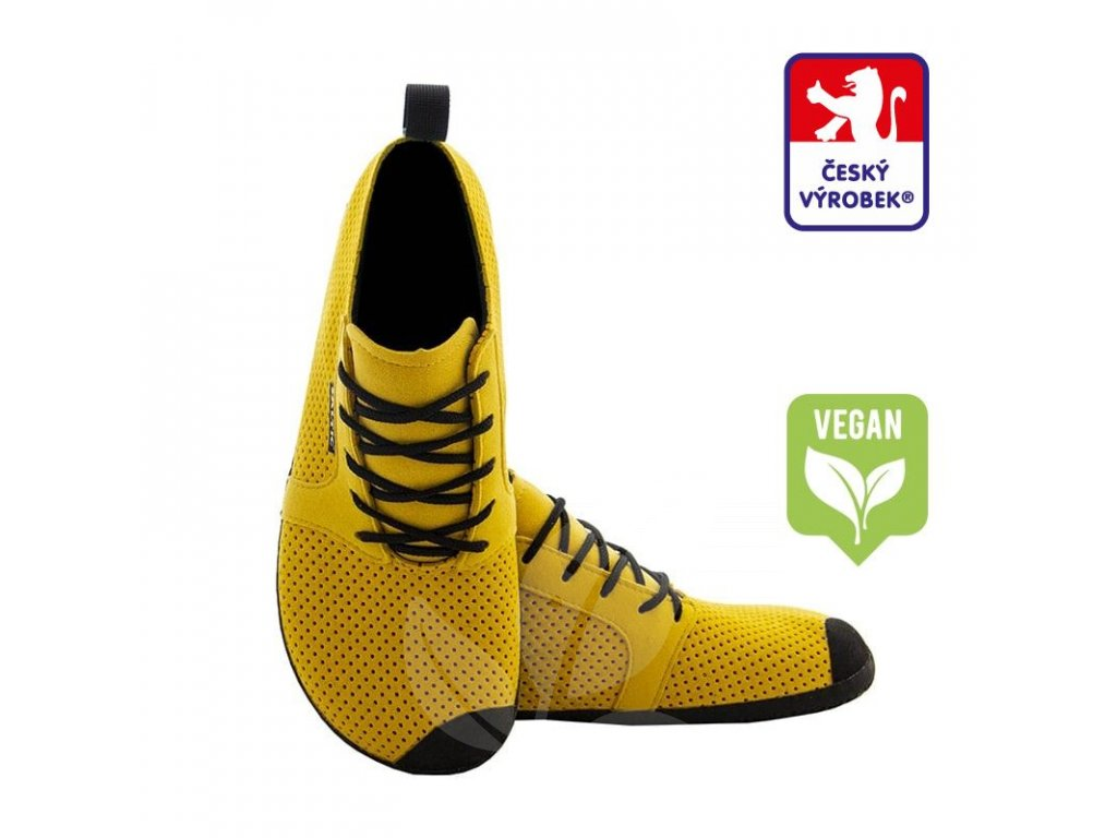 saltic veg yellow CV