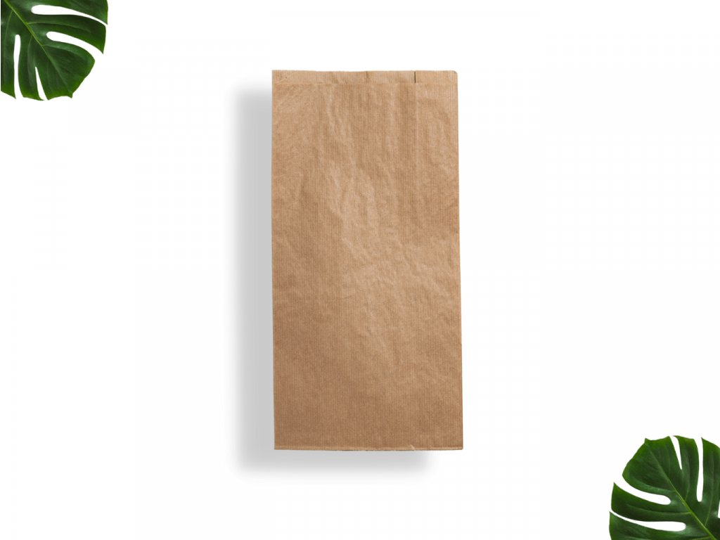 Papírový sáček 290x150x65 main