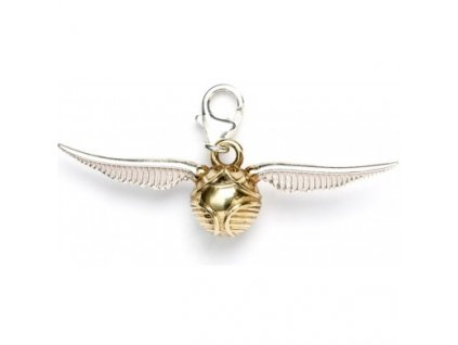 hp charm snitch front 1