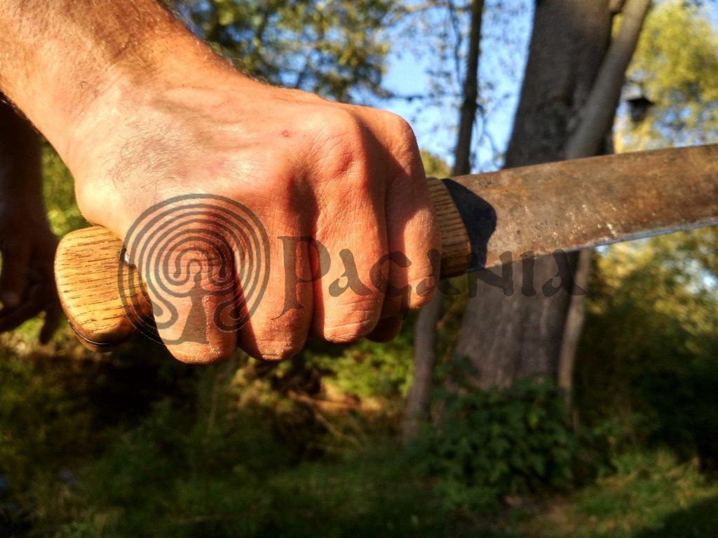 Workshop - vikingské metody tréninku.