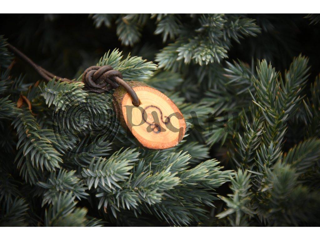 amulet wicca přívěšek litha pagania