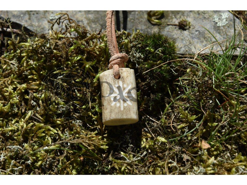 Ochranný pohanský amulet z paroží ručně rytý Aett