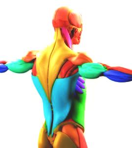 Svalová bolest