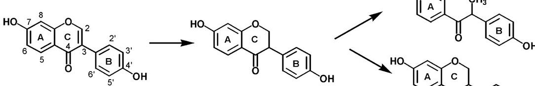 biological_effect1084x176