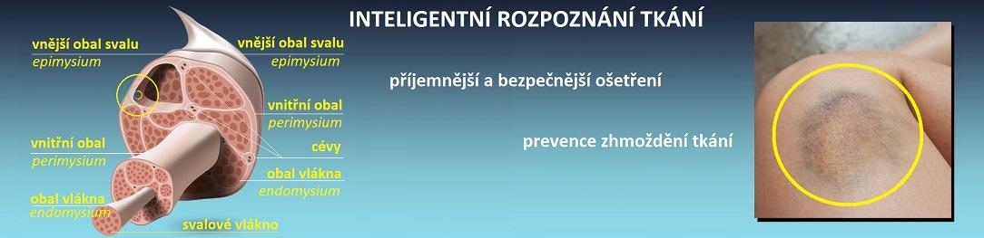 ImproperTreatmentCZtxt_1084x263