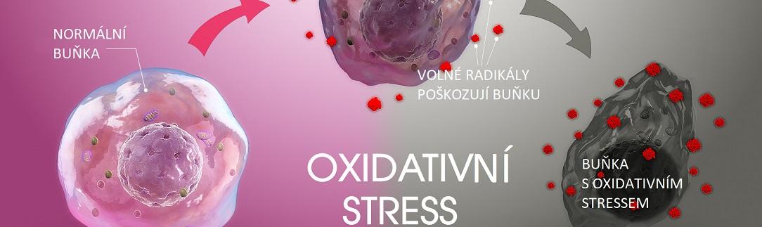 RLT_Oxidative_Stresscz1084X323