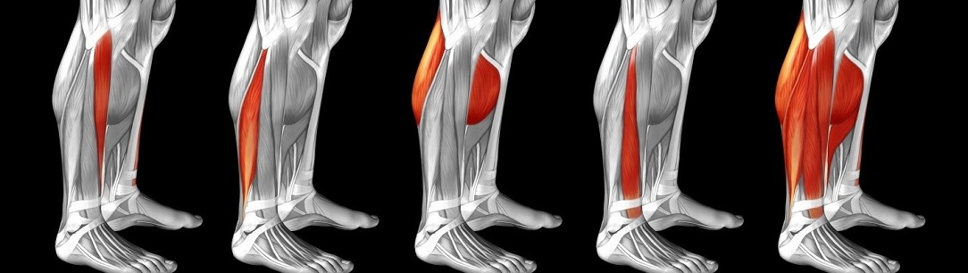 achilles_tight_calf_1084x306