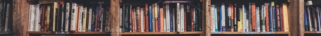 bookshelves1084x124