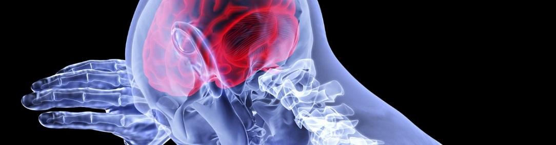 cervicokranial_syndrome1084x284