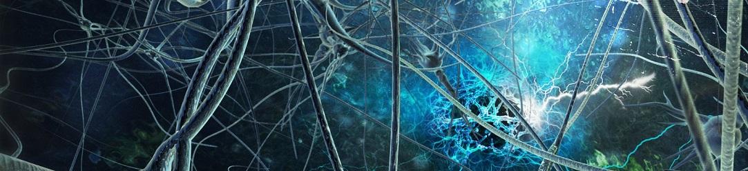 neurons_1083