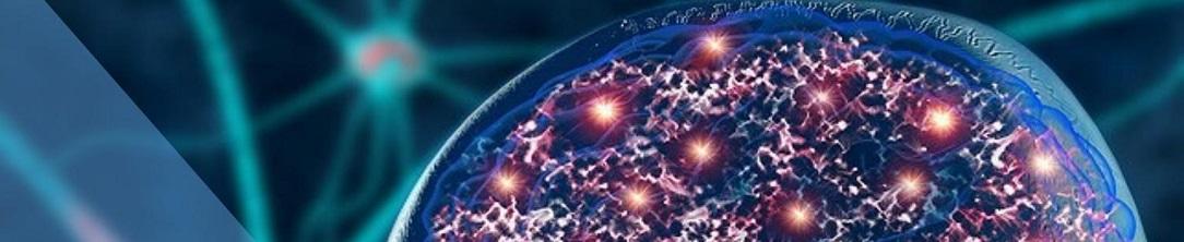 neurostimulation_brain1084x222