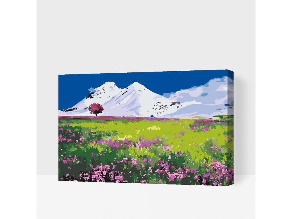 PAINT BY NUMBER - MEADOW IN THE MIDLE OF THE MOUNTAINS