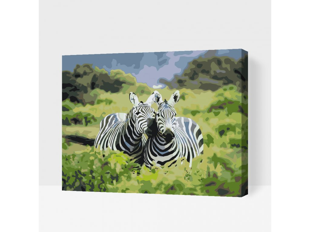 PAINT BY NUMBER - SAFARI ZEBRAS